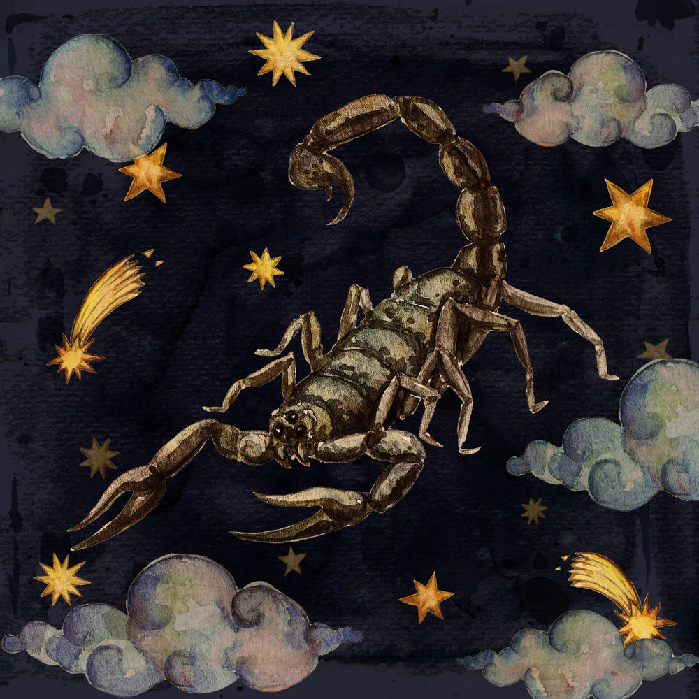 Скорпион - созвездие Хешвана