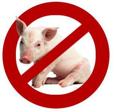 porc-impur-loi-torah