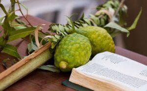 10 советов для празднования Суккота у себя дома